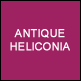 Antique Heliconia